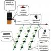 Принцип работы и преимущества системы капельного полива на даче