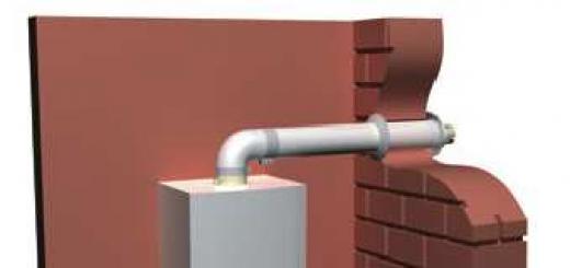 Обзор преимуществ коаксиального дымохода для газового котла, порядок монтажа